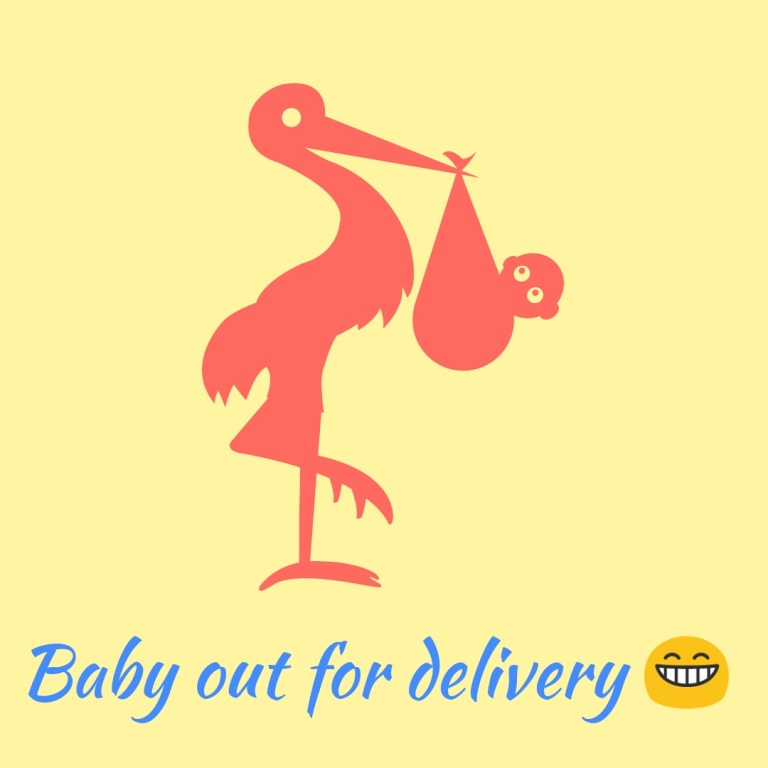 Crane Carrying Baby for Delivery